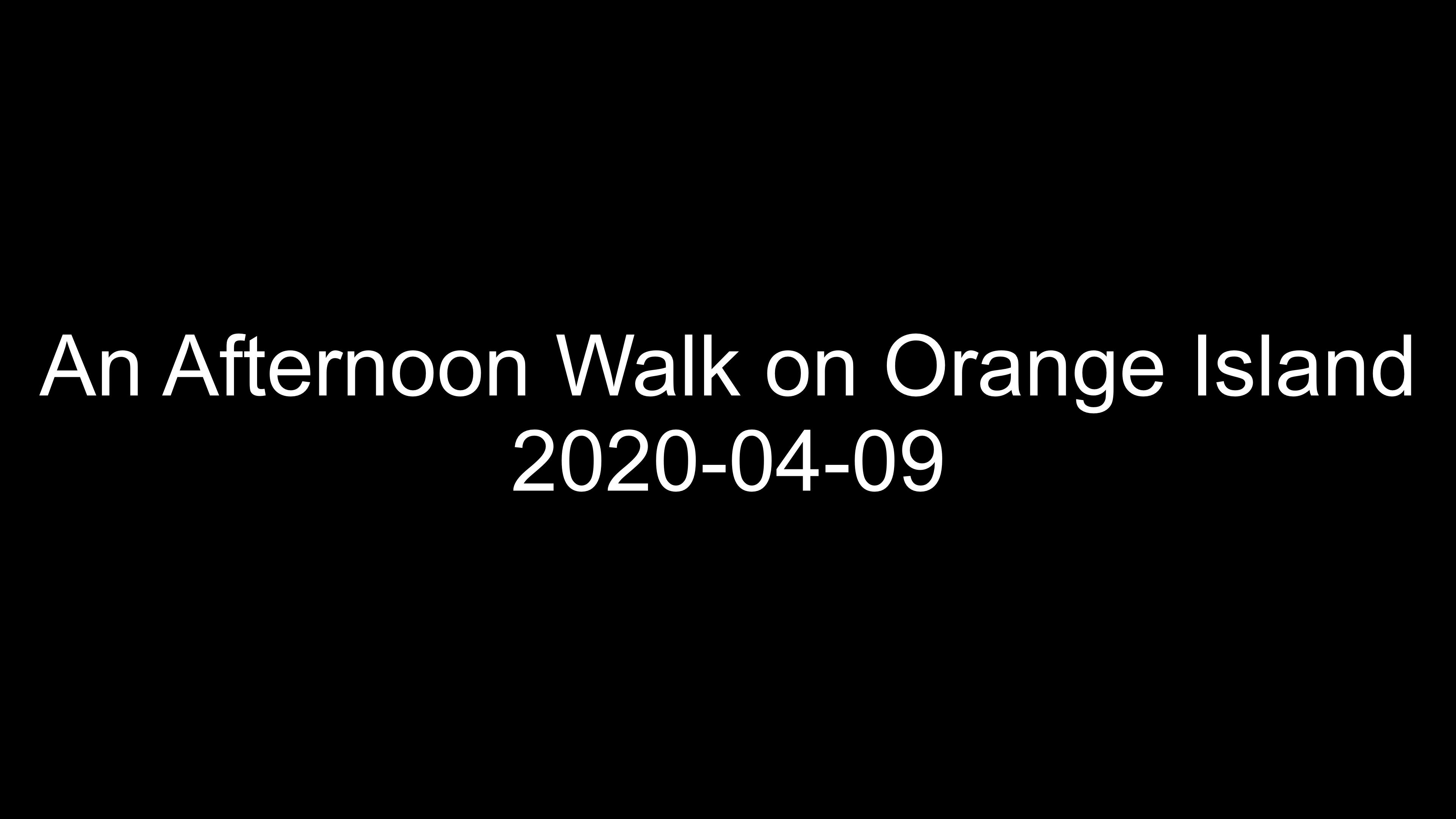 snapshot 13-04-2020 19:23